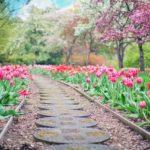 Ładny oraz zadbany ogród to zasługa wielu godzin spędzonych  w jego zaciszu w toku pielegnacji.